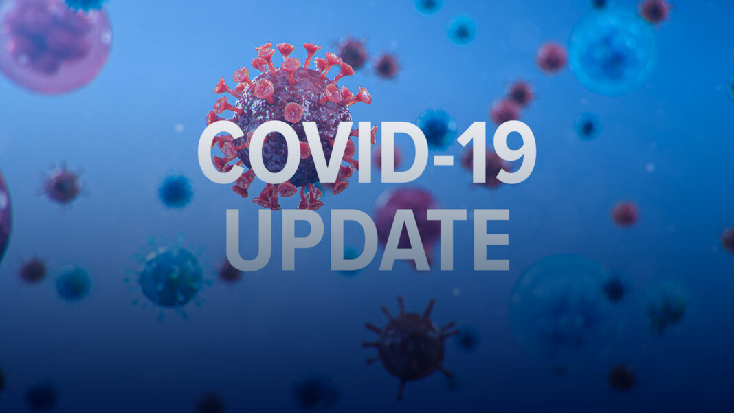 Artist's impression of red COVID-19 virus on blue background