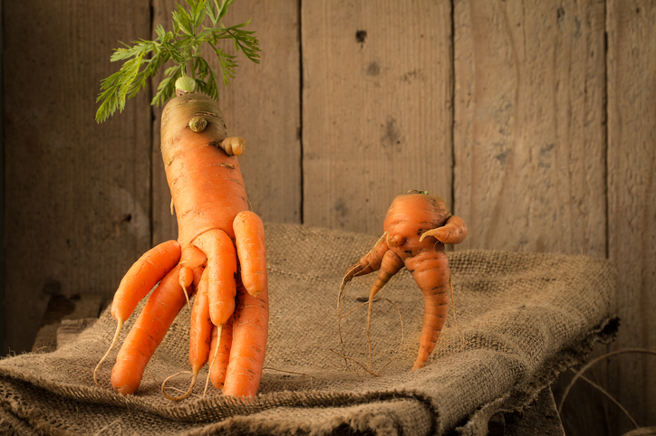carrots of unusual shape lies on a wooden table