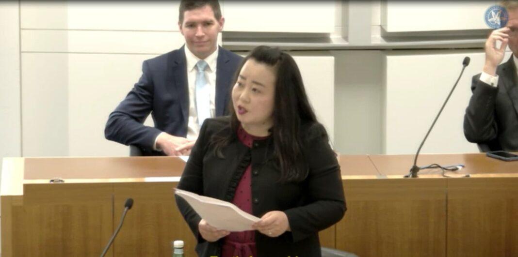 Elizabeth Lee MLA, Leader of the Opposition