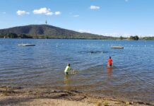 A few kids swimming in Lake Burley Griffin on a sunny day with Black Mountain Tower in the background