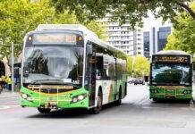 Transport Canberra buses on Alinga Street