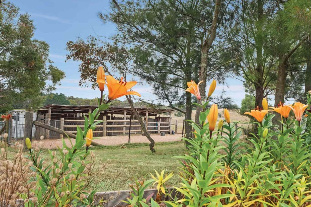 Stables with flowers in foreground