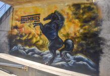 Brumbies mural at GIO Stadium