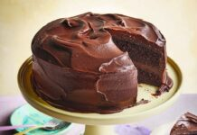 Gluten-free chocolate fudge cake