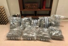 cannabis seized