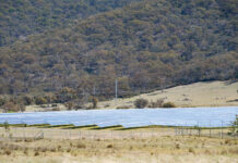 banks of solar panels at a solar farm in the hills near Canberra