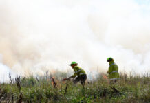 prescribed burns cultural burns ACT and NSW